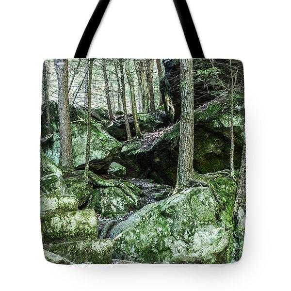 Slippery Rock Gorge - 1933 Tote Bag