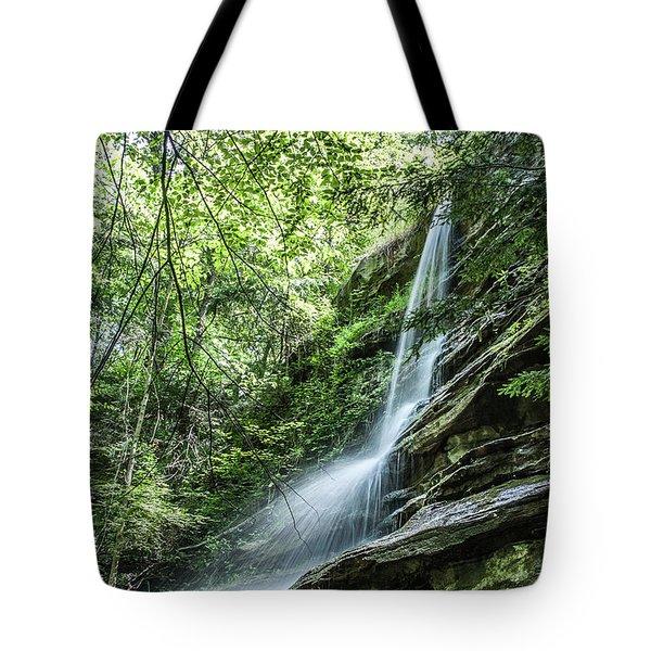 Slippery Rock Gorge - 1957 Tote Bag
