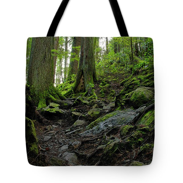 Tote Bag featuring the photograph Slippery When Wet by Sharon Talson