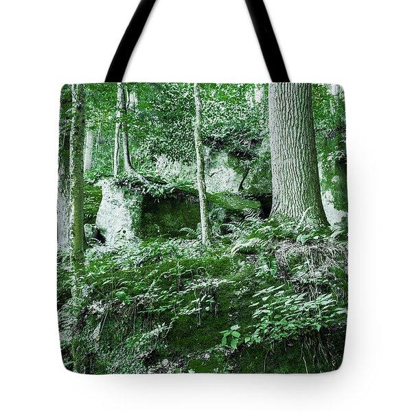 Slippery Rock Gorge - 1902 Tote Bag