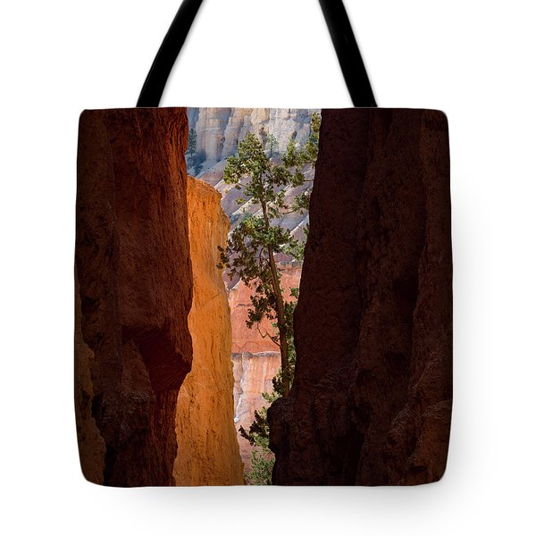 Sliver Of Bryce Tote Bag