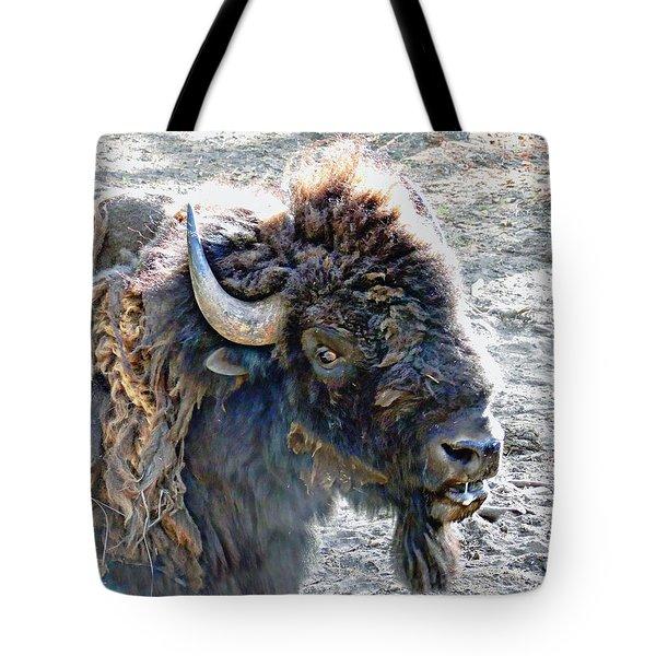 Slobbering Buffalo Tote Bag