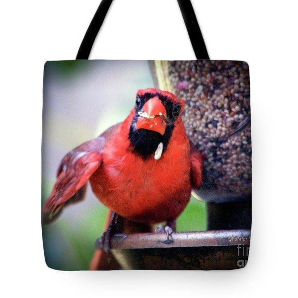 Sloppy Joe Tote Bag