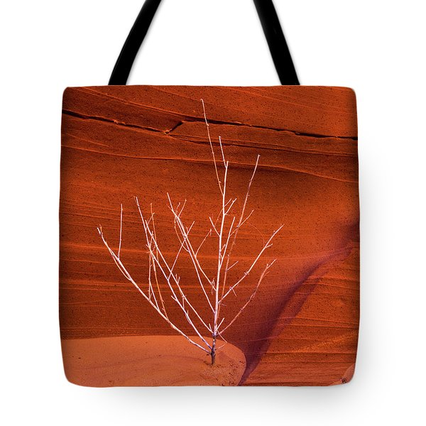 Slot Canyon Sentinel Tote Bag