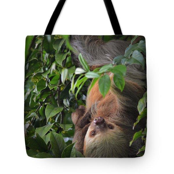 Sloth Pose Tote Bag