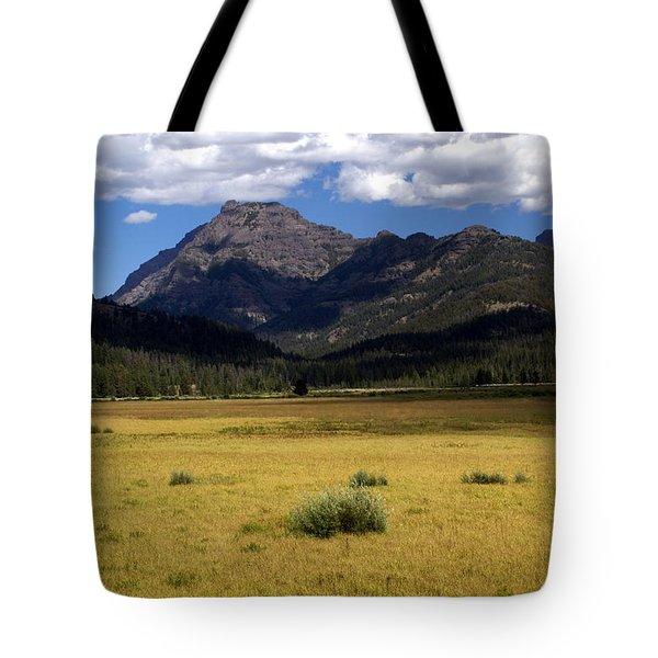 Slough Cree Vista Tote Bag by Marty Koch