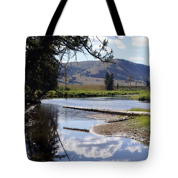 Slough Creek 1 Tote Bag by Marty Koch