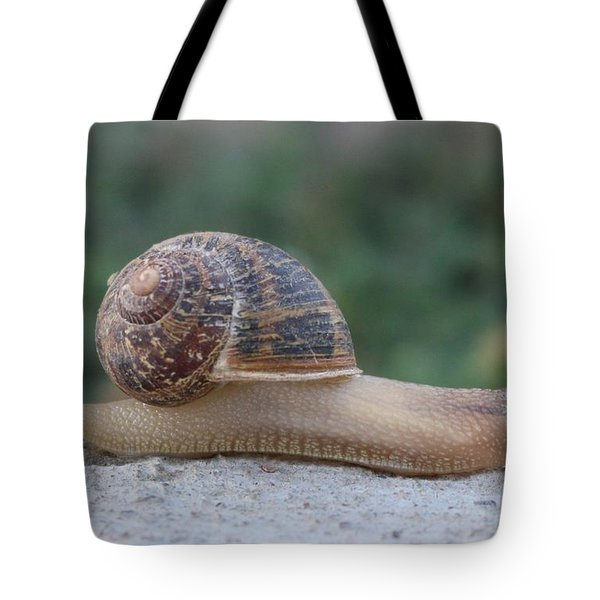 Slow Down  Tote Bag by Christy Pooschke