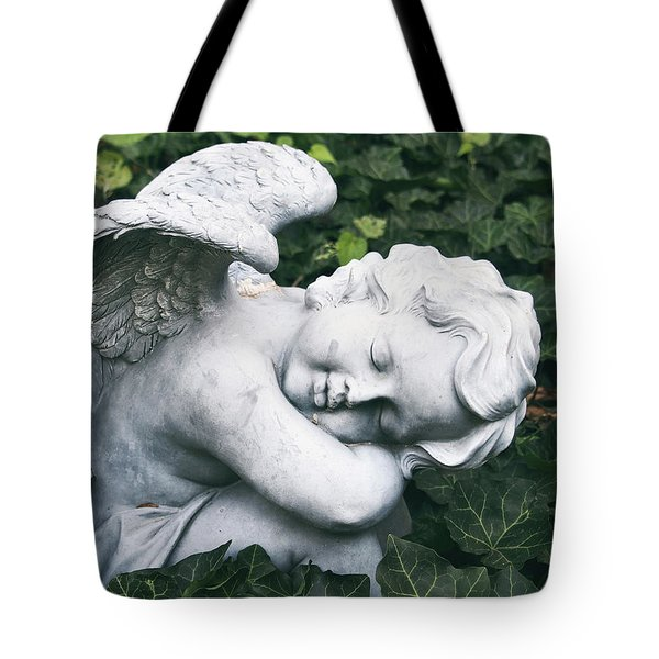Slumber Tote Bag by Tom Druin