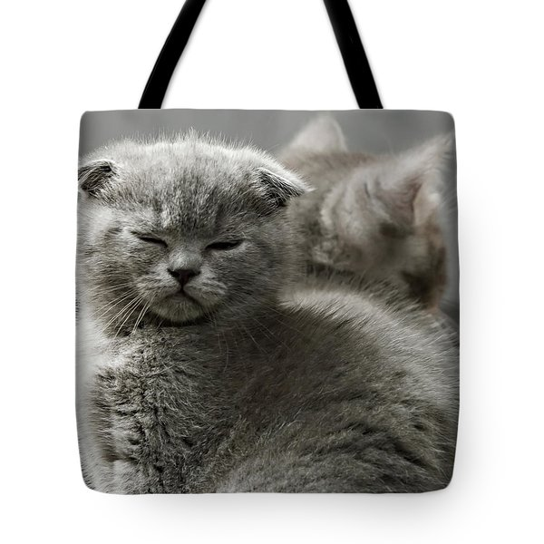 Slumbering Cat Tote Bag