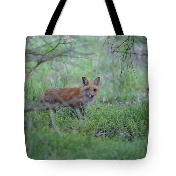 Tote Bag featuring the photograph Sly by Heidi Poulin