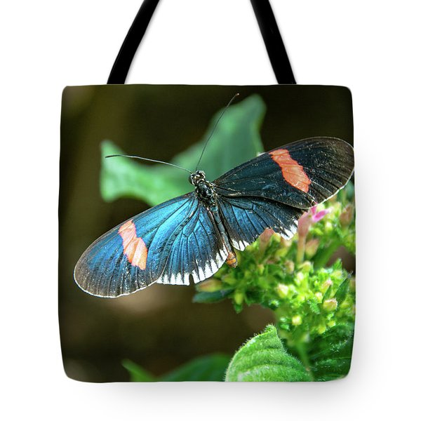 Small Black Postman Butterfly Tote Bag