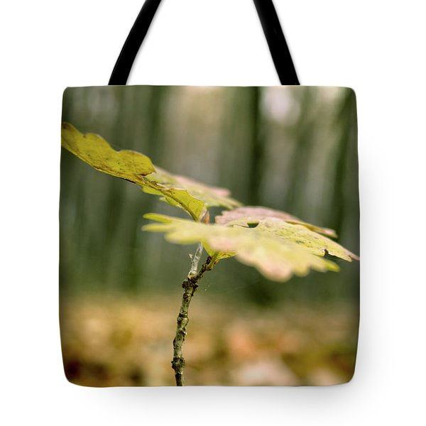 Small Branch With Yellow Leafs Close-up Tote Bag