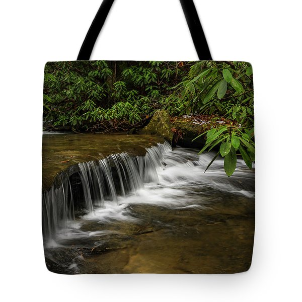 Small Cascade On Pounder Branch. Tote Bag by Ulrich Burkhalter