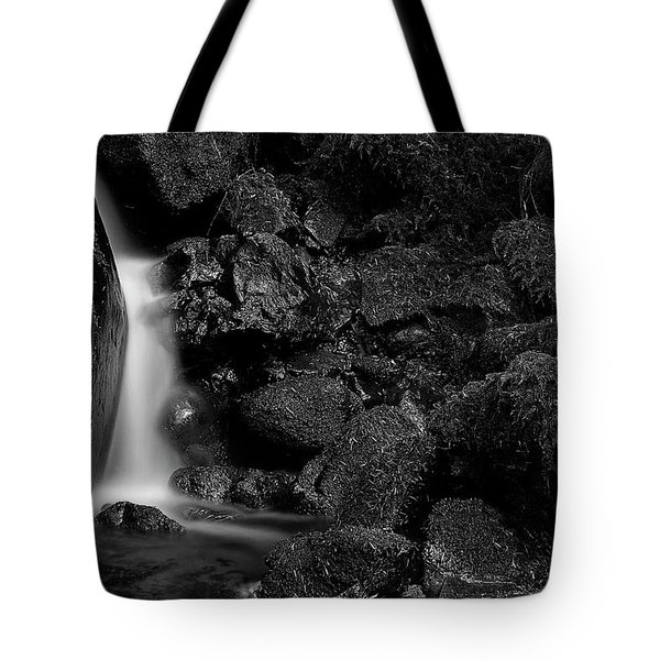Small Fall Tote Bag