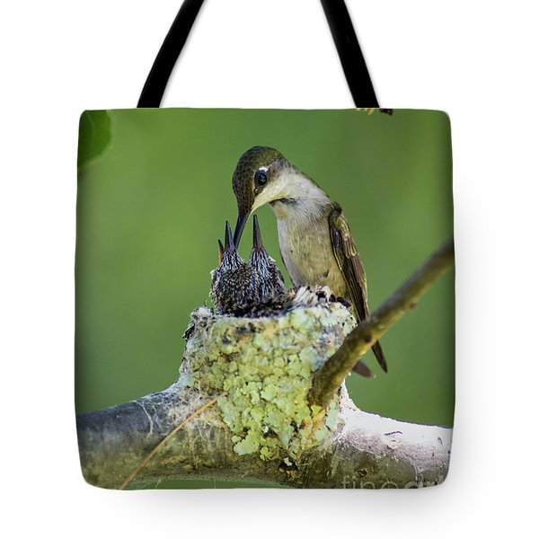 Tote Bag featuring the photograph Small Family - D009336 by Daniel Dempster