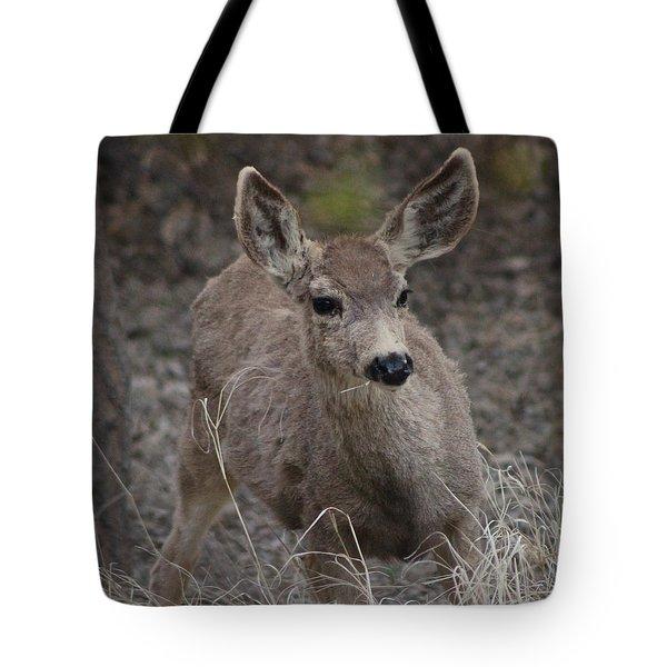 Small Fawn In Tombstone Tote Bag by Colleen Cornelius