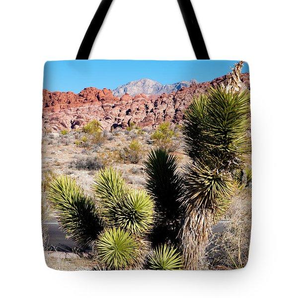 Small Joshua Tree Tote Bag by Rae Tucker