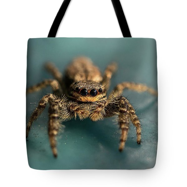 Tote Bag featuring the photograph Small Jumping Spider by Jaroslaw Blaminsky