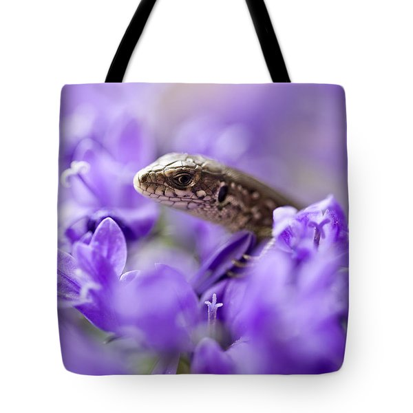 Tote Bag featuring the photograph Small Lizard by Jaroslaw Blaminsky
