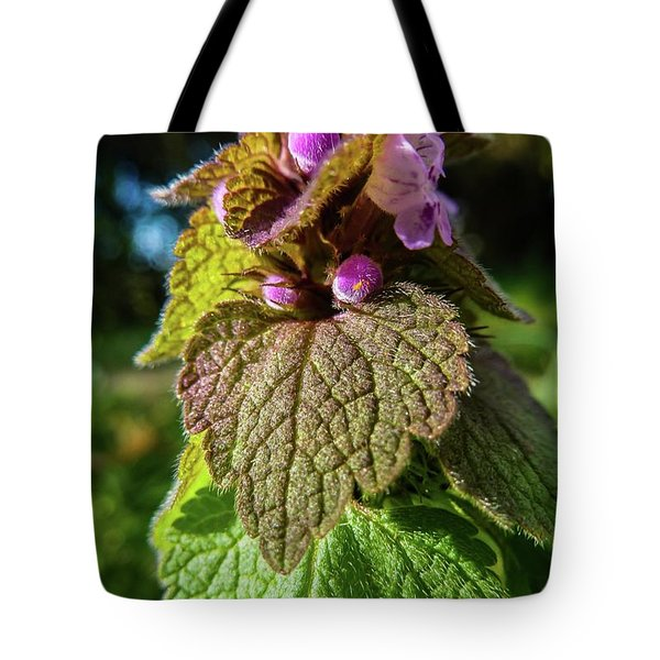 Small Mauve Flowers 7 Tote Bag by Jean Bernard Roussilhe