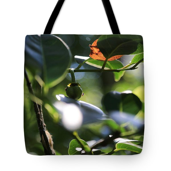 Small Nature's Beauty Tote Bag