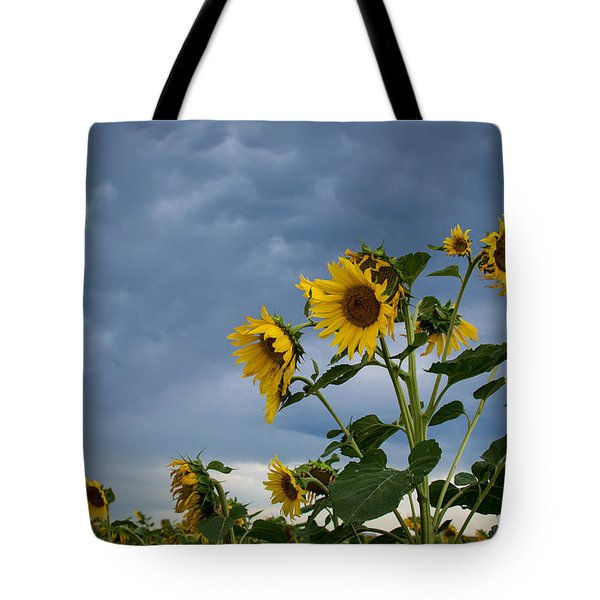 Small Sunflowers Tote Bag