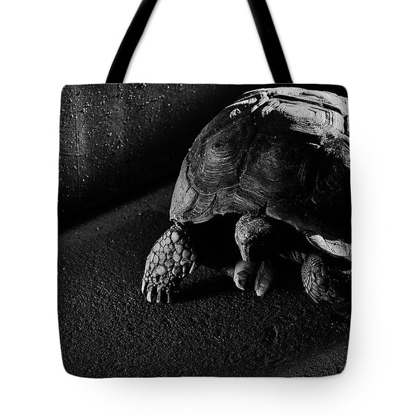 Tote Bag featuring the photograph Small Turtle Exploring The Surroundings by Eduardo Jose Accorinti