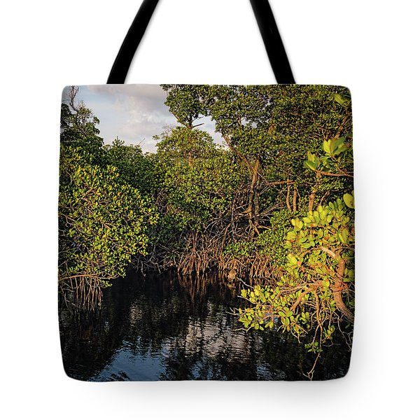 Tote Bag featuring the photograph Small Waterway In Vitolo Preserve, Hutchinson Isl  -29151 by John Bald