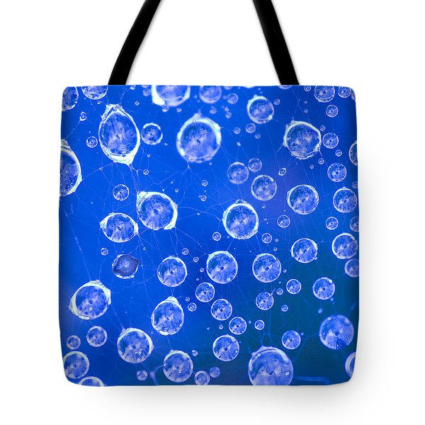 Tote Bag featuring the photograph Small Worlds by Tom Vaughan