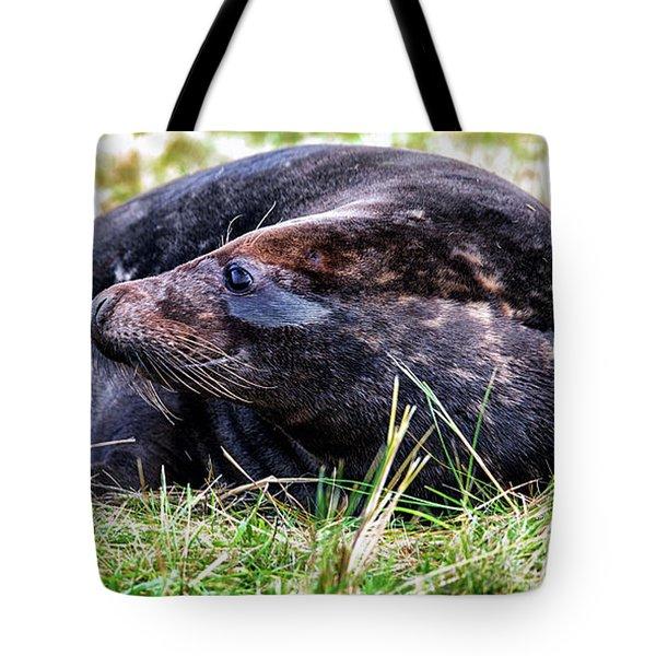 Smiler Tote Bag