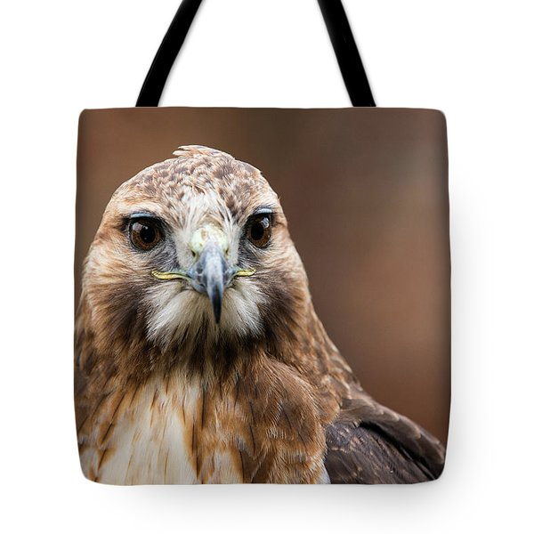 Tote Bag featuring the photograph Smiling Bird Of Prey by Dennis Dame