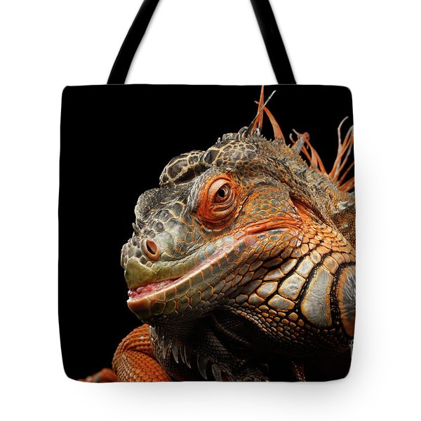 smiling Orange iguana isolated on black  Tote Bag