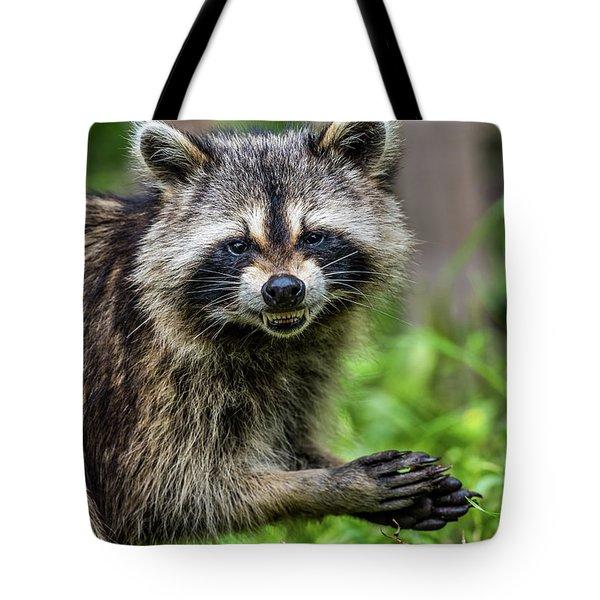 Smiling Raccoon Tote Bag