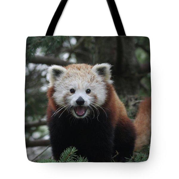 Smiling Red Panda #2 Tote Bag