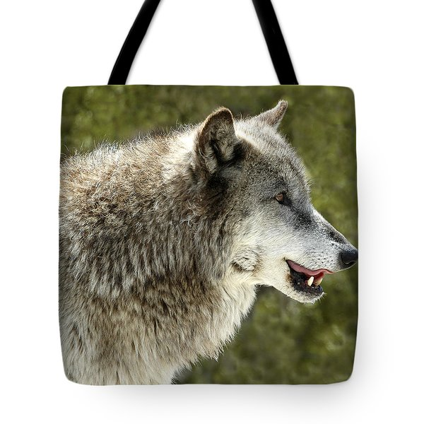 Smiling Wolf Tote Bag