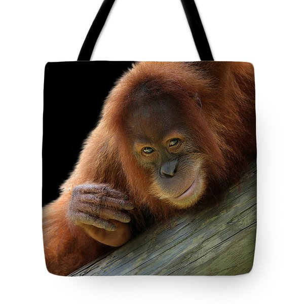 Cute Young Orangutan Tote Bag
