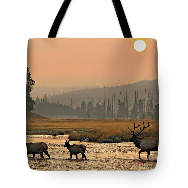 Tote Bag featuring the photograph Smokey Elk Crossing by Wesley Aston