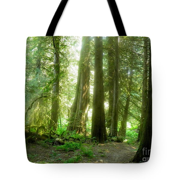 Smokey Forest Tote Bag