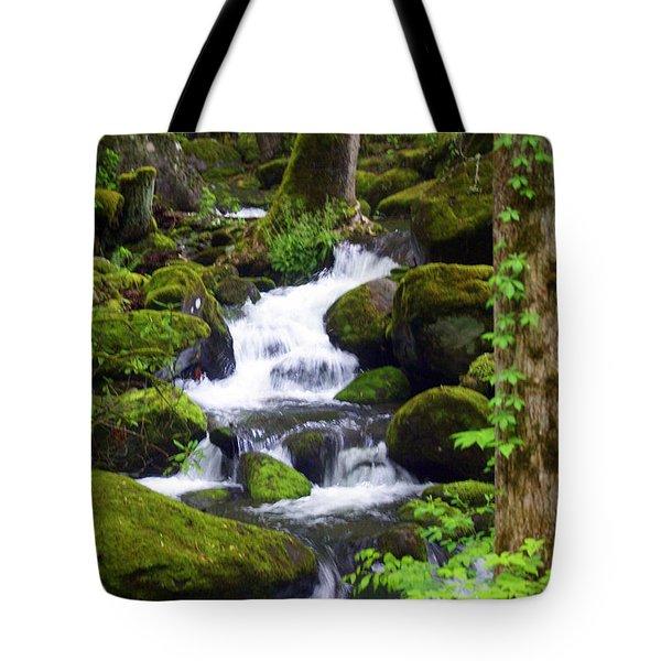 Smokey Mountain Stream Tote Bag by Marty Koch