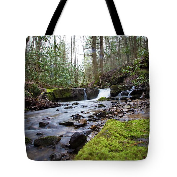 Smokey Mountains 4 Tote Bag