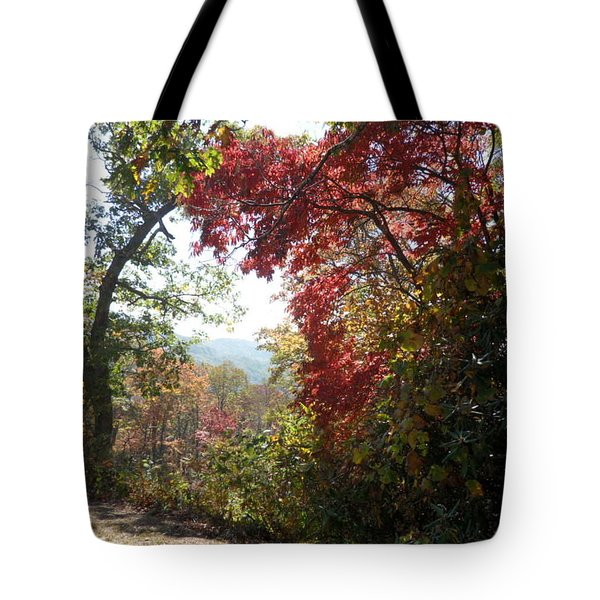 Smokies 13 Tote Bag