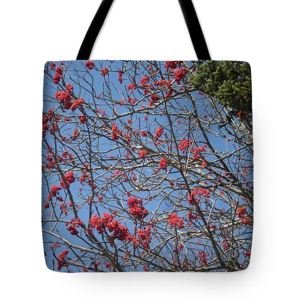 Smokies 8 Tote Bag