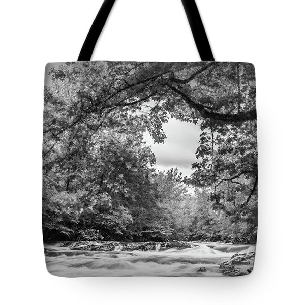 Smokies Tote Bag