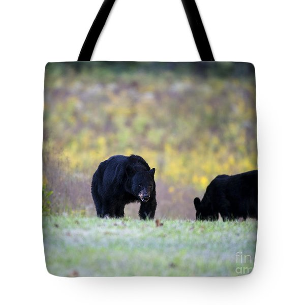 Smoky Mountain Black Bears Tote Bag by Nature Scapes Fine Art