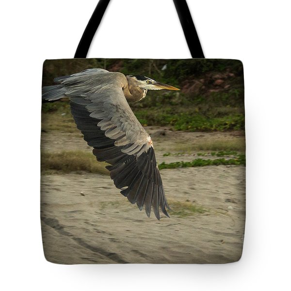 Smooth Sailing Wildlife Art By Kaylyn Franks Tote Bag