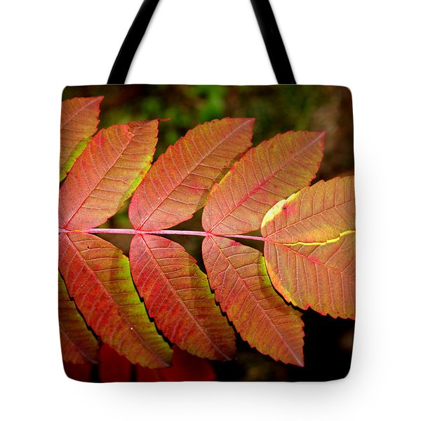 Smooth Sumac Tote Bag by Robert Morin