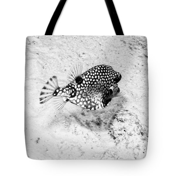 Smooth Trunkfish Tote Bag