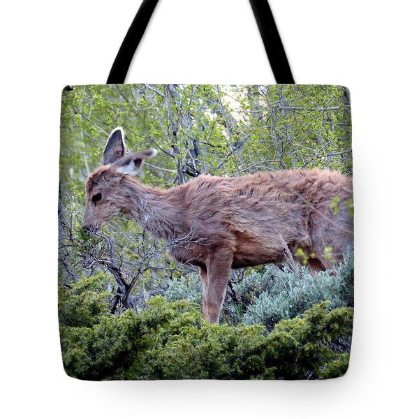 Snack Time Tote Bag by Karen Shackles