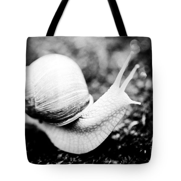 Snail Crawling On The Stone Artmif Tote Bag